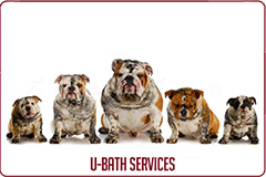 U-Bath Services Button